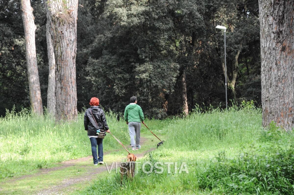 VisitOstia - Ostia, pineta di Castelfusano