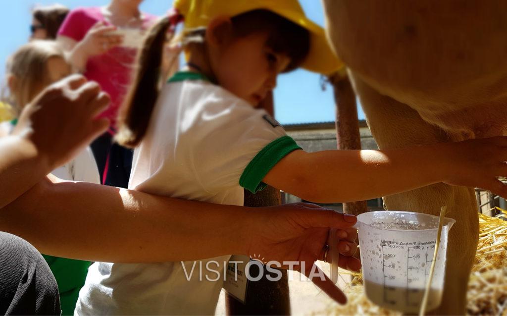 VisitOstia - Ostia per famiglie, fattoria didattica