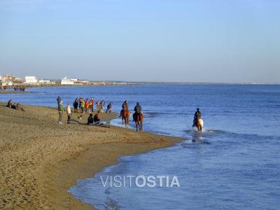 VisitOstia - spiaggia in Inverno con cavalli